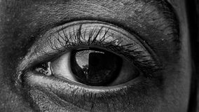 L'occhio immagini stock libere da diritti