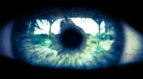 L'occhio del fratello maggiore Fotografia Stock