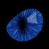 L'occhio del gatto Fotografie Stock