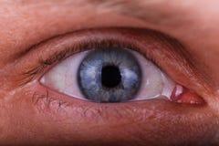 L'occhio del macro maschio eccellente del colpo immagini stock libere da diritti