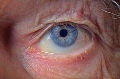 Occhio dell'uomo anziano Fotografie Stock Libere da Diritti