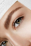 L'occhio della donna attraente Fotografia Stock