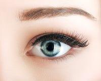L'occhio della donna con naturale compone Fotografia Stock