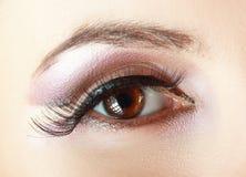 L'occhio della donna con naturale compone Immagini Stock Libere da Diritti