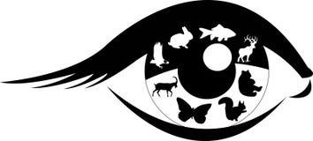 L'occhio dello scienziato Fotografia Stock Libera da Diritti