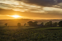 L'occhio dorato nel cielo, Cornovaglia, Regno Unito Fotografia Stock