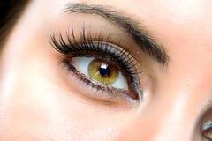 L'occhio femminile a macroistruzione Immagini Stock