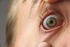 L'occhio umano spalancato, pupilla sta guardando avanti, macro del primo piano, spazio della copia Immagine Stock