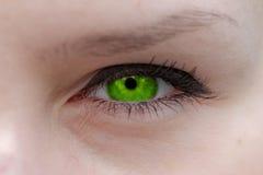 L'occhio verde Fotografie Stock