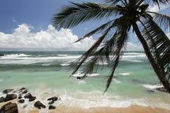 L'oceano Immagini Stock Libere da Diritti