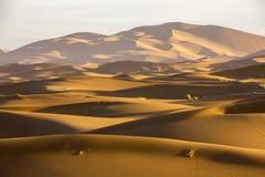 L'oceano della sabbia Immagine Stock Libera da Diritti