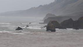 L'Oceano Pacifico archivi video