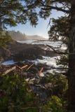 L'oceano Pacifico incontra la costa selvaggia dell'isola di Vancouver, BC, il Canada Immagine Stock