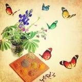 L'odore e la bellezza naturali attirano Immagini Stock Libere da Diritti