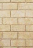 l oeil绘了trompe墙壁 免版税库存图片