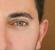 L'oeil d'homme vert. Photos libres de droits