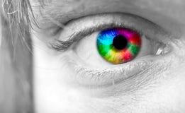 L'oeil de l'homme coloré Photographie stock libre de droits