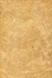 L'oeil de l'oiseau d'érable (texture en bois) Photos libres de droits