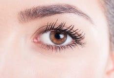 L'oeil en gros plan de beauté avec le mascara et la peau naturelle regardent Photographie stock