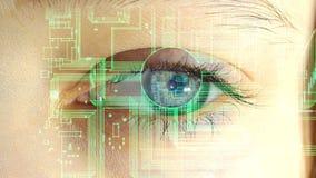 L'oeil humain avec les circuits électroniques et les symboles projetant dans lui, le concept de futures technologies clips vidéos