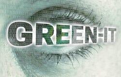 L'oeil informatique vert avec la matrice regarde le concept de visionneuse photos libres de droits