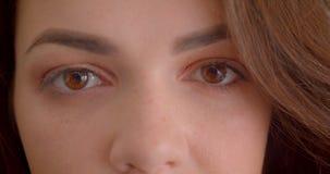 L'oeil-portrait en gros plan de la jolie fille caucasienne de brune observe dans calmy de caméra d'isolement sur le fond blanc banque de vidéos