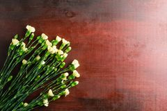 L'oeillet frais fleurit sur le fond abstrait d'une table en bois photo libre de droits