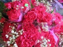 L'oeillet rouge frais et attrayant fleurit avec des souffles de bébé au fleuriste image libre de droits