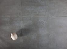L'oeuf de dinde sur une dalle en béton Photographie stock libre de droits