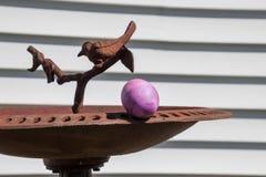 L'oeuf de pâques pourpre est caché sur le rebord du bain d'oiseau photo stock