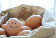 L'oeuf de poule jaune rougeâtre de sourire dans le tissu mettent en sac image libre de droits