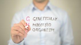 l'OGM a génétiquement modifié l'organisme, écriture d'homme sur l'écran transparent photo stock