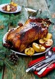 L'oie cuite au four par Noël avec des pommes Image libre de droits