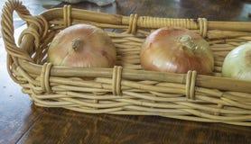 L'oignon de Vidalia du sud Photos libres de droits