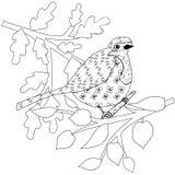 L'oiseau de merle de griffonnage, part de la page de coloration antistress d'arbre Élément monochrome de conception illustration stock