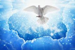 L'oiseau de Saint-Esprit vole en cieux, lumière lumineuse brille du ciel Photos stock