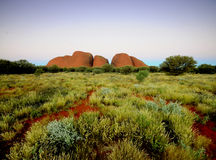 l'Olgas Kata Tjuta Photo stock