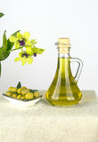 L'olio d'oliva è un prodotto naturale Fotografia Stock Libera da Diritti