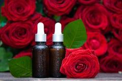 L'olio di Rosa, imbottiglia e fiore fresco e va su uno sfondo naturale, bio-, organico immagine stock libera da diritti