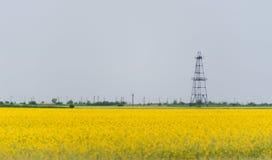 L'olio ed il pozzo di gas attrezzano, giacimento rurale descritto del canola Immagini Stock