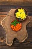 L'olivello spinoso con la foglia del crisantemo vicino e giallo della menta fiorisce Fotografia Stock Libera da Diritti