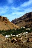 l'Oman Image stock