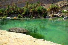 l'Oman Photographie stock libre de droits