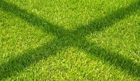L'ombra sull'erba verde. Fotografia Stock