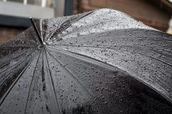 L'ombrello bagnato Fotografie Stock