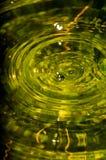 L'onde sur l'étang Photographie stock