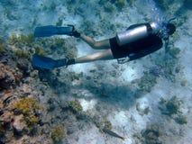L'operatore subacqueo da sopra Immagine Stock
