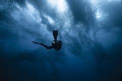 Operatore subacqueo e funzionamento delle sardine Fotografia Stock Libera da Diritti