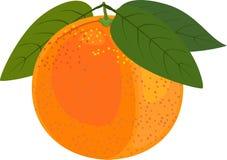 L'orange avec le vert part sur un fond blanc Photographie stock