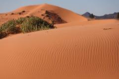 L'orange chaud du sable Photo libre de droits